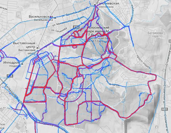 Популярные беговые маршруты в Голосеевском лесу по версии Strava