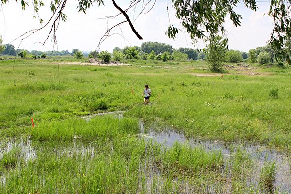 Странная тетка в болоте. Фото: из интернета