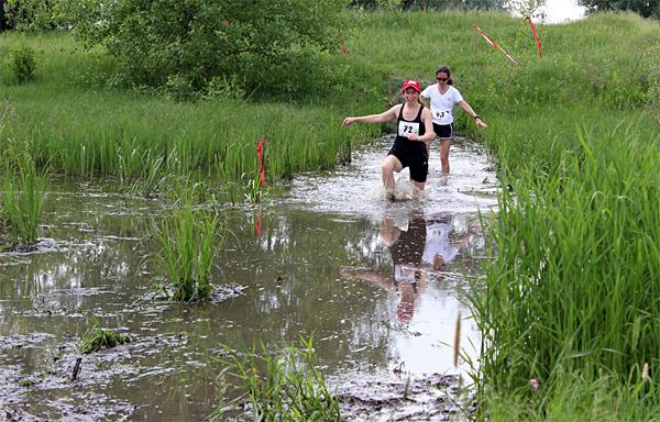 Снова в болоте, лягушки скачут, что-то булькает, жизнь кипит. Фото: из интернета