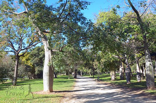 Дорожки в парке Турия