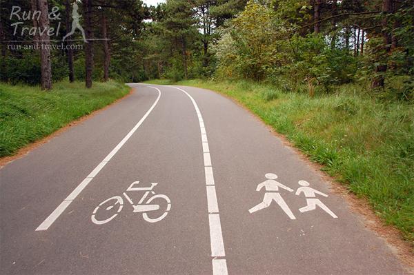 Трехполоска – две полосы для велосипедистов, одна – для бегунов и пешеходов