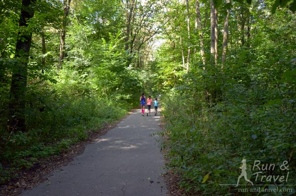 Асфальтовые дорожки в лесопарке