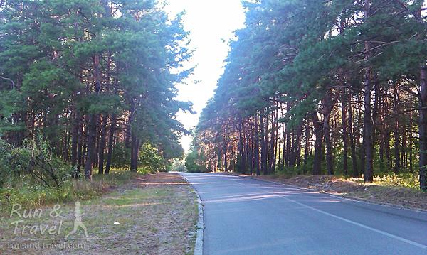Дорога на Трухановом острове