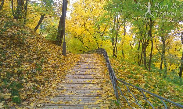 Золотая осень в разгаре, середина октября