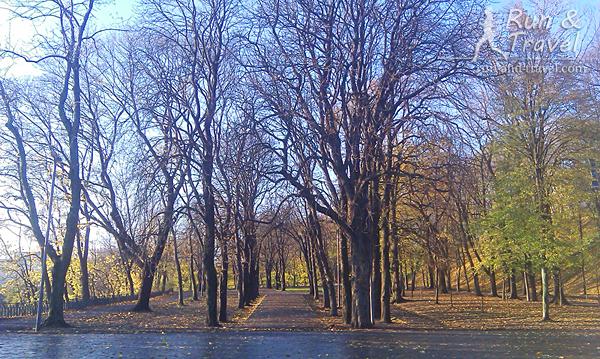 Солнечное ноябрьское утро