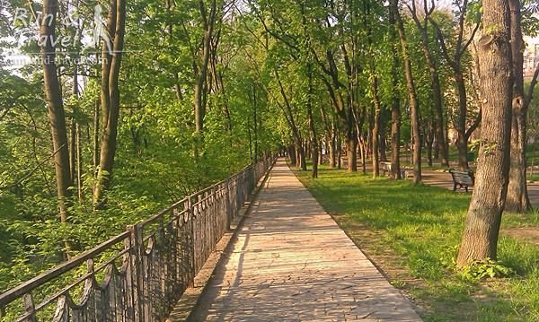 Дорожки Владимирского парка в мае