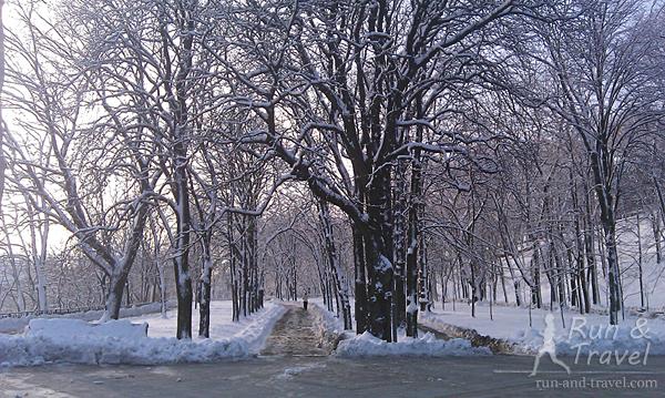 Почищенные дорожки в парке