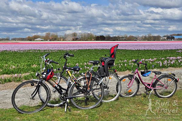 Семейный велопарк (велики арендованные)