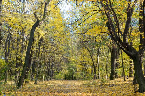Золотая осень во всей красе
