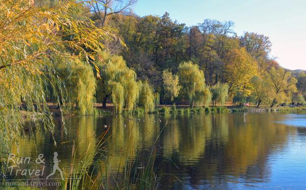 Ореховатский пруд в парке имени Рыльского