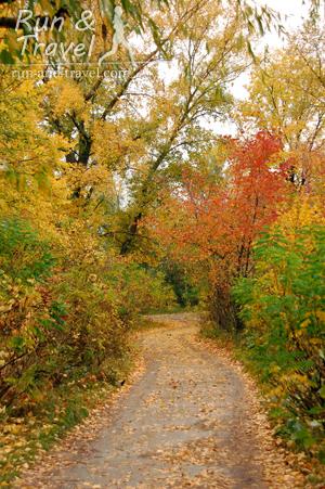 Осенние дорожки Парка дружбы народов