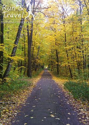 Осенние дорожки выставочного комплекса