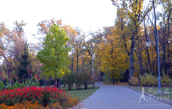 В парке растут столетние дубы, клены, ясени и липы