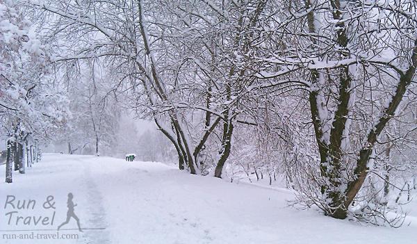 Часть вдоль улицы Приречной