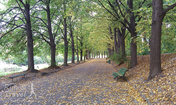 Осенняя аллея