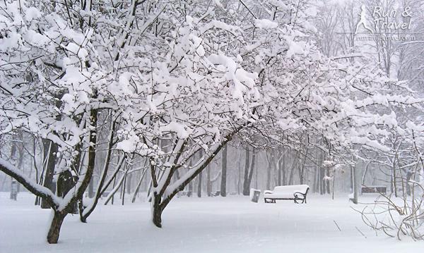 Сказочный зимний парк