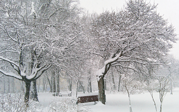 Верхняя терраса парка