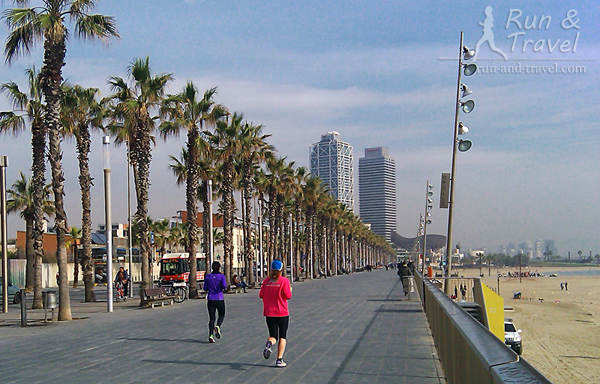 Променад, велодорожки отделены от пешеходной зоны (за пальмами)