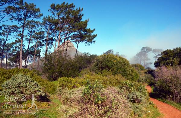 Начало тропы возле Сигнального холма