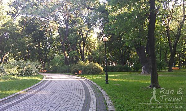 В Мариинском парке много вековых деревьев