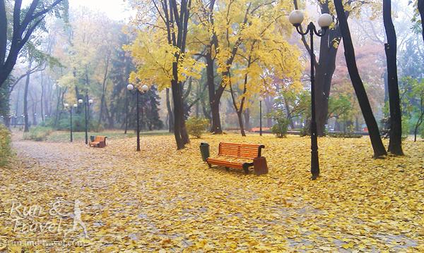 Золотая осень в Мариинском парке