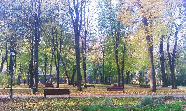 Городской сад в ноябре
