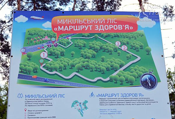 Маршрут здоровья по Никольскому лесу, 5.4 км