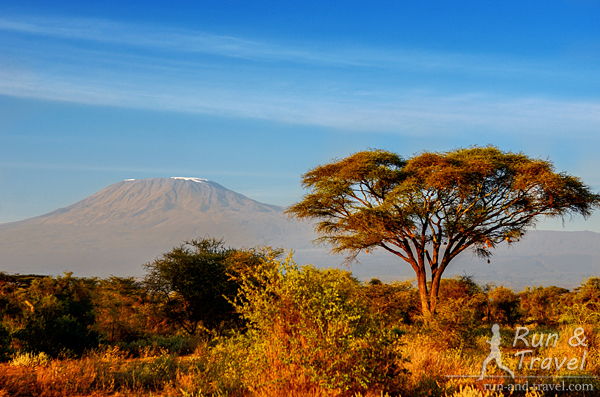 Утренний Килиманджаро после рассвета, вид из кемпа
