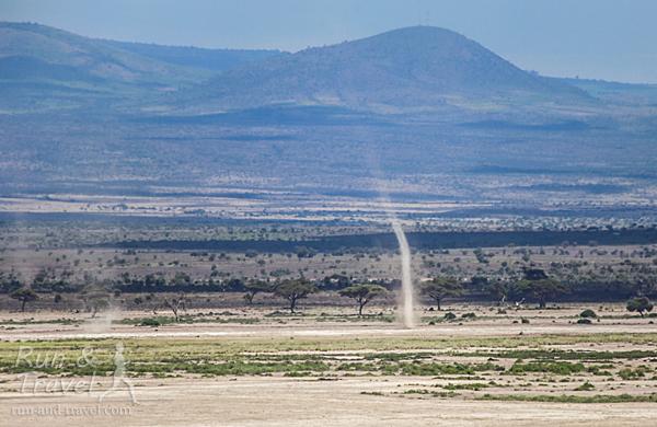 Почва очень сухая, на ветру периодически поднимаются целые пылевые мини-смерчи