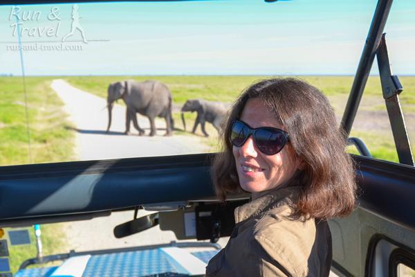 Слоны в Амбосели
