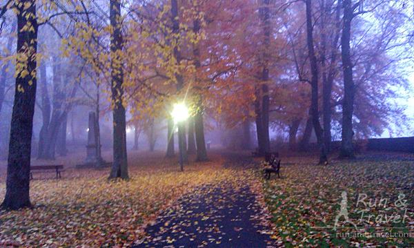 Из небольшого парка Бюрггартен открываются виды долину реки Таубера (или на туман)