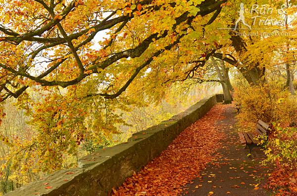 Золотая осень в крепостном парке Бюрггартен