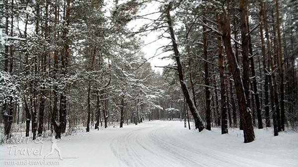 Снегопад на Трухановом