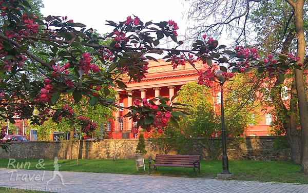 Вид из парка Шевченко на красный корпус университета