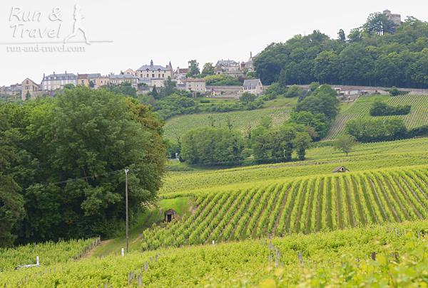 Sancerre – городок на холме среди виноградников