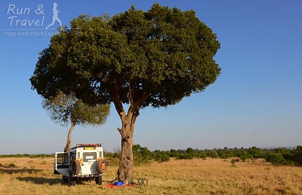 Первым делом – завтрак, располагаемся под деревом на краю большой поляны